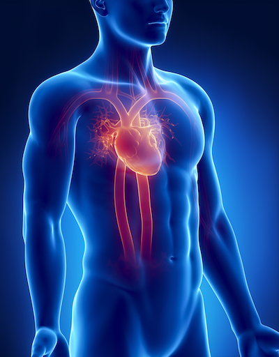 Men's Health Focus: How to Improve Your Heart Health
