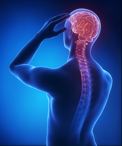 Investigating the Research on Giving Melatonin for Stroke Recovery