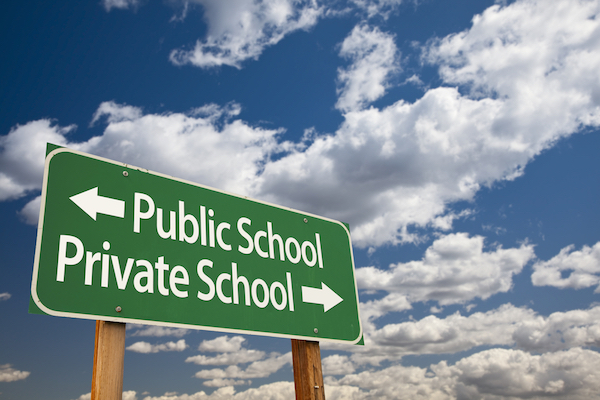 Risk planning and grand ideas about private schooling